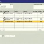 SAP Business One Projektmanagement ingenieur/ engeneering