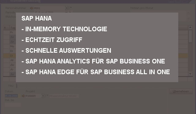 SAP HANA für Business One
